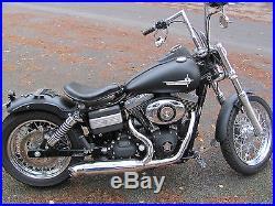 2 in 1 Auspuff Edelstahl poliert für Harley Davidson Street Bob Dyna Twin Cam
