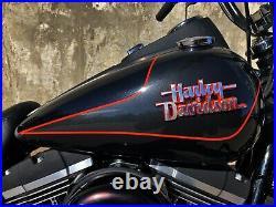 2016 Harley-Davidson Dyna