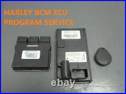 Harley Davidson Security Fob Bcm Unlock Pin Recovery Ecu Street Road Glide